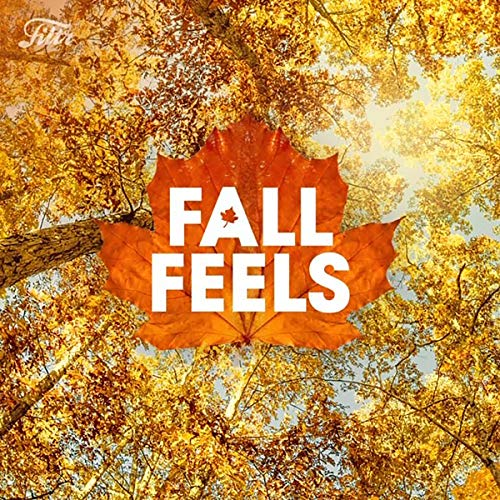 Fall Feels by Filtr (Shawn Mendes Something Big)
