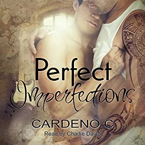 Perfect Imperfections Audiobook