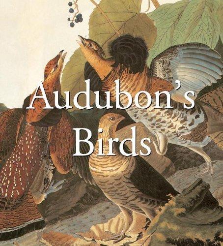 Audubons Birds Mega Sq (Mega Squares) - Mall 1 Sq