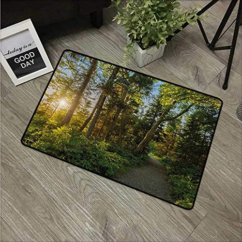 - Indoor Door Mat with Non Slip Backing,Landscape National Park Cape Breton Highlands Canada Forest Path Trees Tranquility Easy Clean Outdoor Doormats,Low Profile Modern Aqua Runners Area Rug,24x16 in