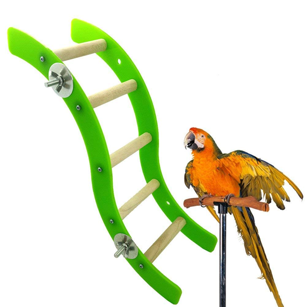 Plifet Hamster - Escalera de acrílico Ondulado para cangrejos ...