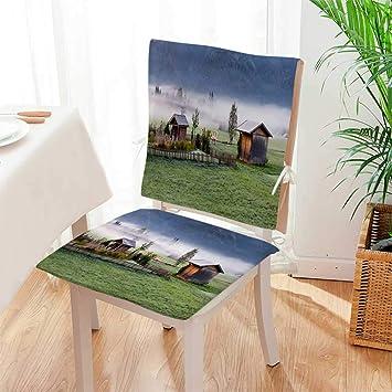 Amazon.com: Mikihome – Cojín para silla (2 unidades), diseño ...