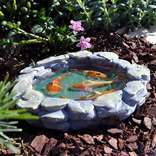 Miniature fairy garden tranquil koi pond buy online in for Where to buy koi fish near me