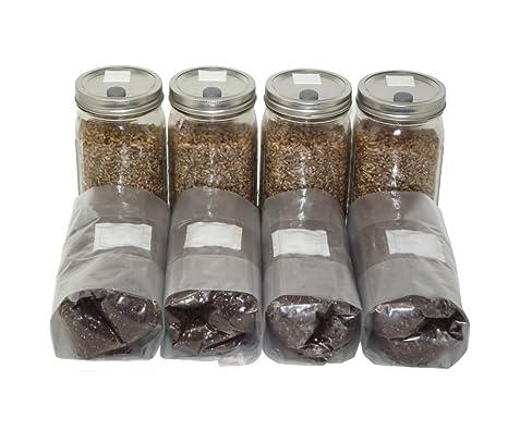 Amazon.com: Cuatro cuarto de tarros de esterilizados Centeno ...