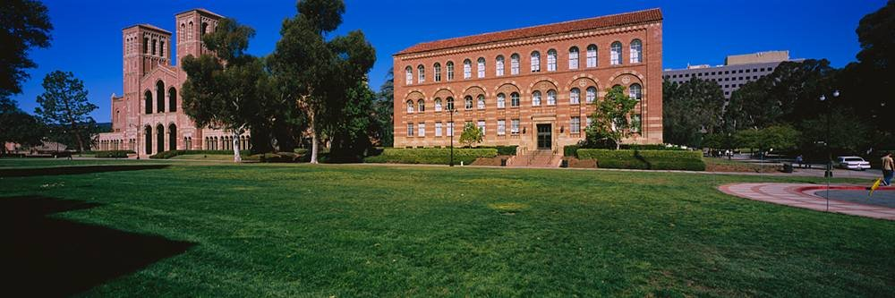 Walls 360 Peel & Stick Wall Murals: Royce Hall with Lawn (84 in x 28 in)