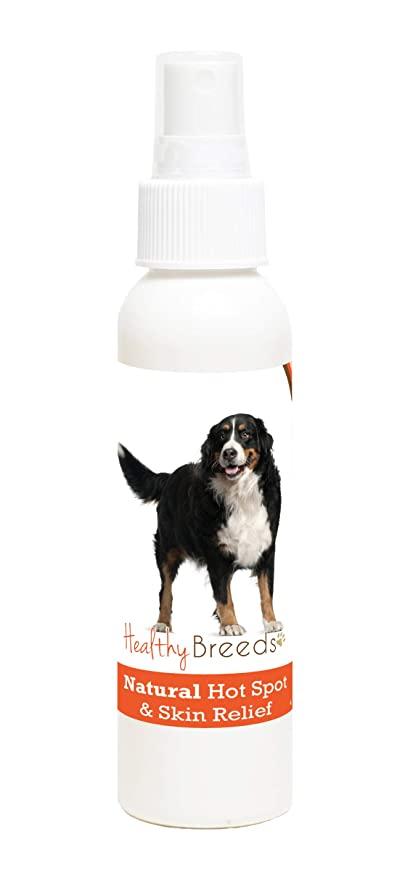 Amazoncom Healthy Breeds Bernese Mountain Dog Natural Dog