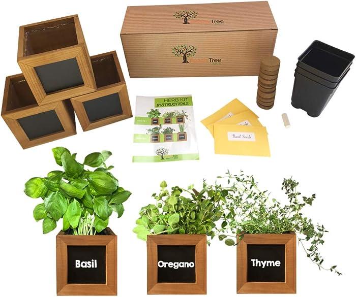 The Best Indoor Garden For Herbs