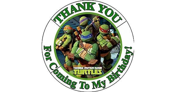 Amazon.com: 12 tortuga ninja TMNT – fiesta de cumpleaños ...