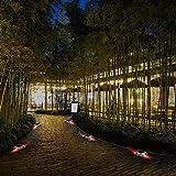 JIGUOOR Solar Deck Lights LED Driveway Dock Lights