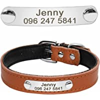 Didog Cute Leather Padded Custom Dog Collar with Engraved Nameplate ID Tag,Fit Cats and Small Medium Dogs,Brown,XS Size