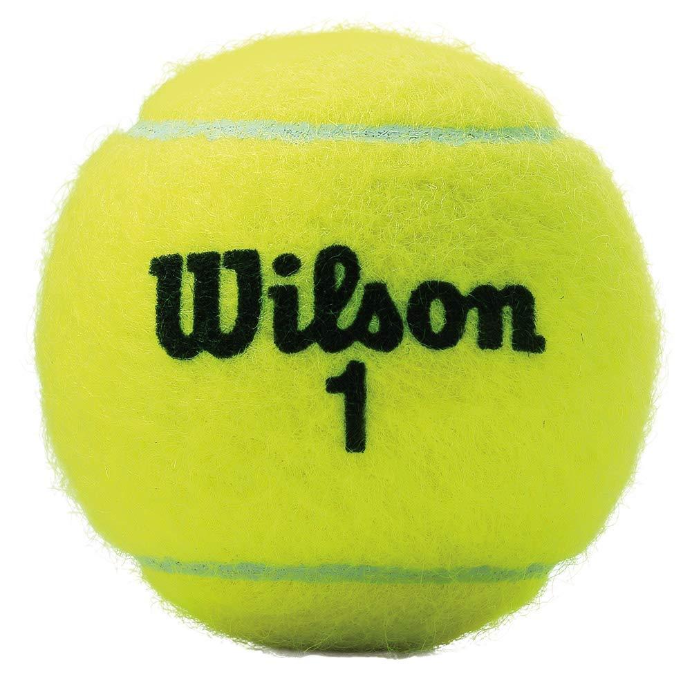 Pelotas de Tenis Wilson Championship 72: Amazon.es: Deportes y aire libre