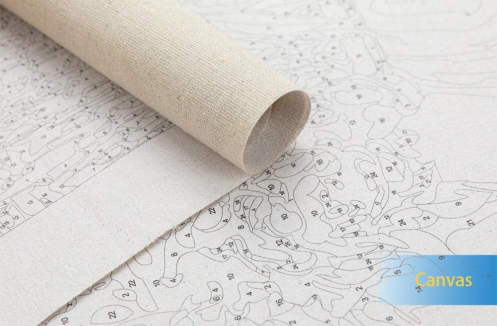Ohne Rahmen Painting-YC Malen Nach Zahlen Kits Blumenfeld 16/×20 Zoll Geschenk F/ür Erwachsene Kinder Mach Es Selbst Haus Dekor