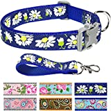 Pet Rejoir Creative Flower Spring Dog Collar Collection- 6 Designer Patterns Holiday Dog Collars– Timeless Charming Royal Blue Daisy Dog Collar- Neck 12~15 Adjustable Collar for Small Dogs