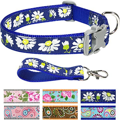 Pet Rejoir Creative Flower Spring Dog Collar Collection- 6 Designer Patterns Holiday Dog Collars– Timeless Charming Royal Blue Daisy Dog Collar- Neck 12~15 Adjustable Collar for Small Dogs by Pet Rejoir