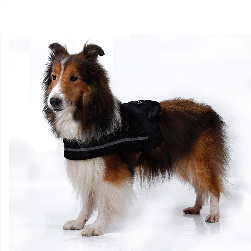 XDYFF Arnés Seguridad para Perro Padesh Acolchado Estilo De Perro ...