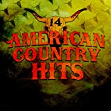 Today's Top Country Hits, Vol. 14