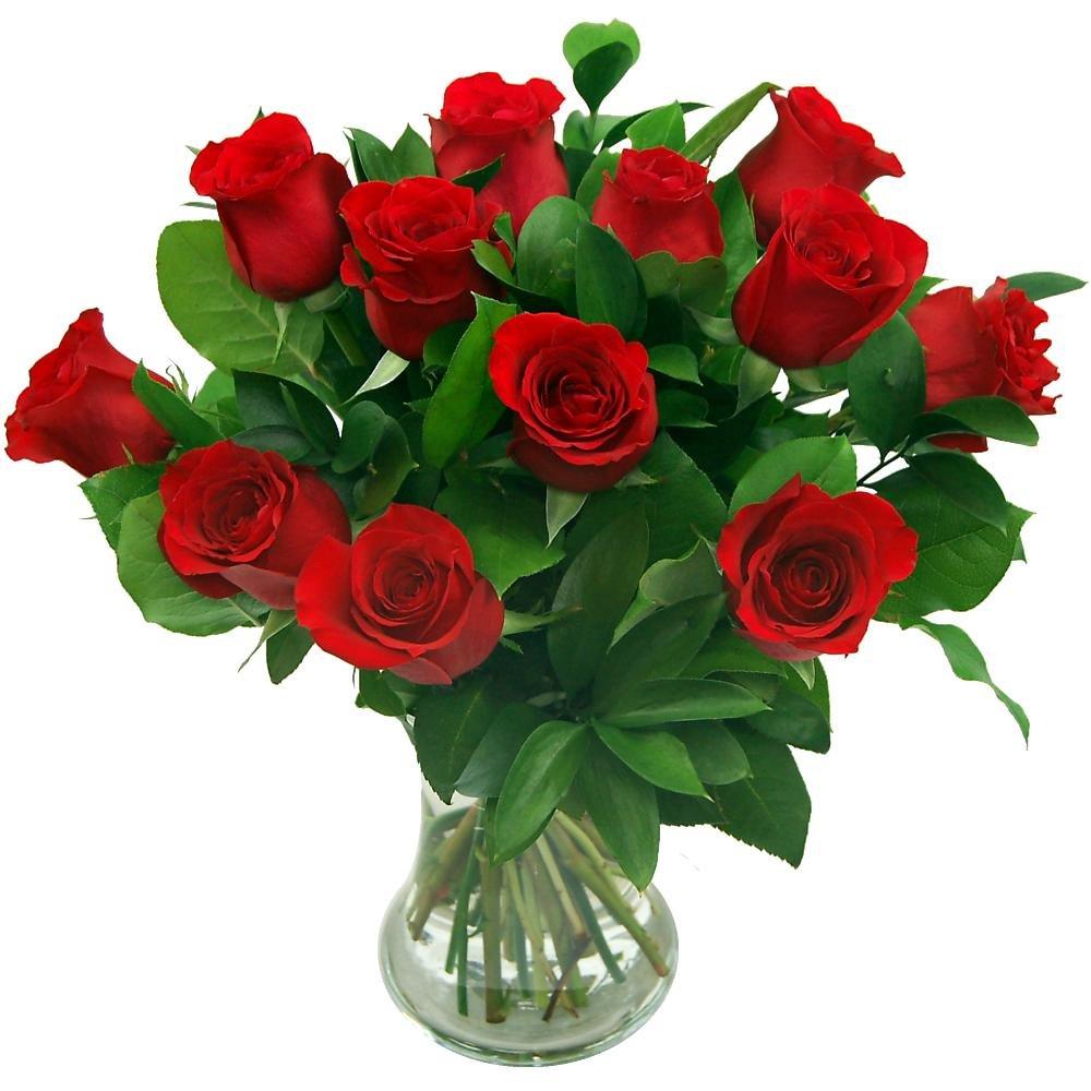 Fresh flowers amazon clare florist 12 red roses true romance fresh flower bouquet premium fresh roses hand arranged izmirmasajfo