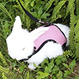 BUBM Adjustable Rabbits Harness Soft Breathable Mesh Harness and Leash with Velcro for Bunny Small Animals Walking, 2 Year Warranty,Pink