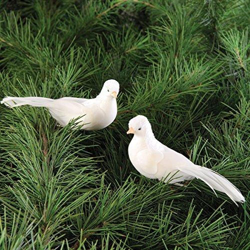Dove Clip Ornament, Assorted of -