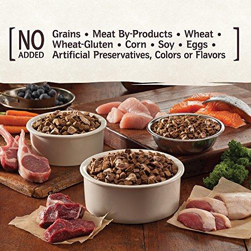 Wellness Core Rawrev Natural Grain Free Dry Dog Food, Original Turkey & Chicken With Freeze Dried Turkey, 20-Pound Bag by Wellness Natural Pet Food (Image #7)