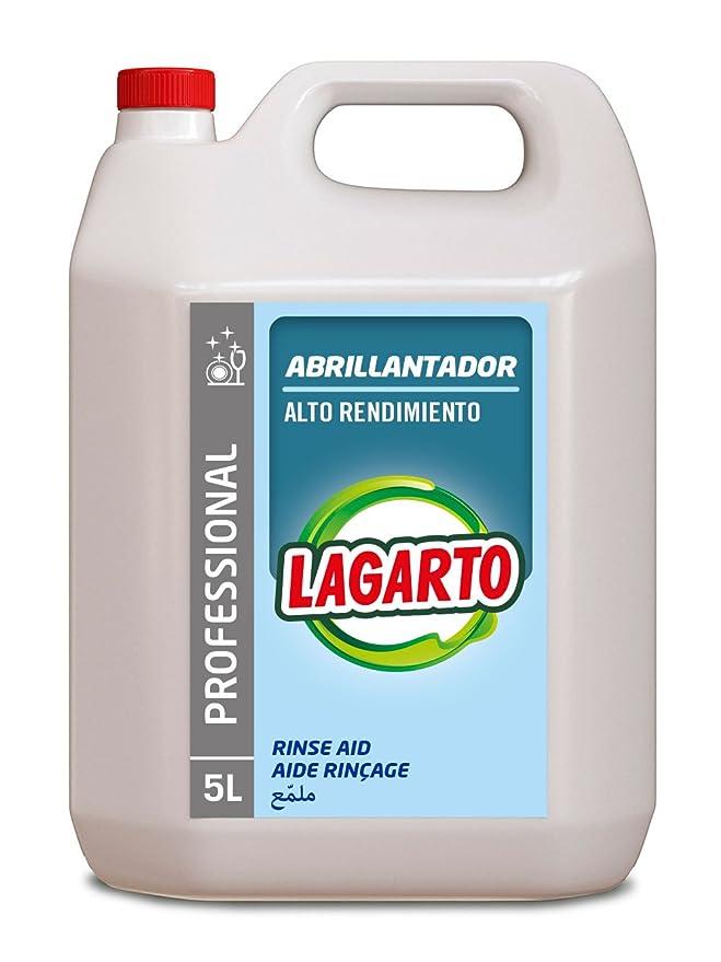 Lagarto Abrillantador Lavavajillas Profesional - 5000 ml: Amazon ...