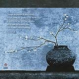 Thich Nhat Hanh 2018 Wall Calendar