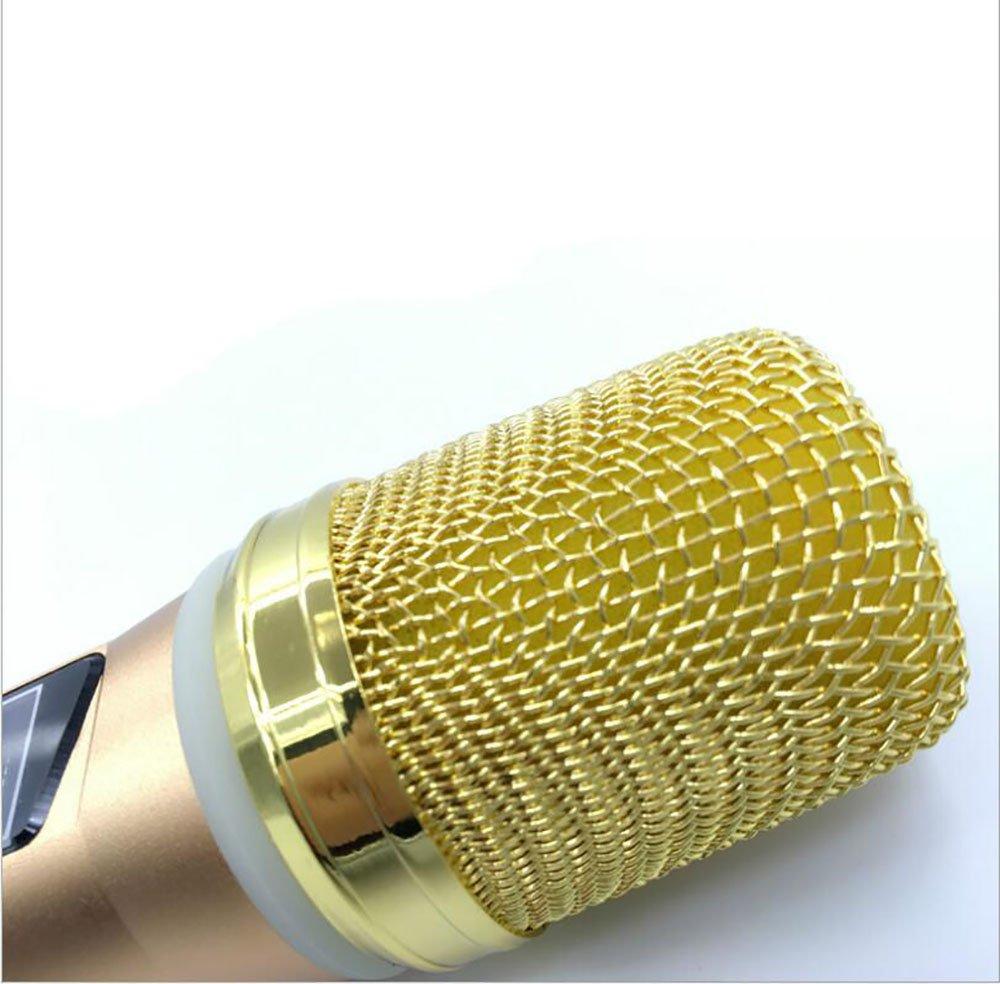 Oro XIAOYA Micr/ófono Sin Hilos del Karaoke del Coche Altavoz Bluetooth Port/átil KTV Player