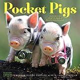img - for Pocket Pigs Wall Calendar 2018 book / textbook / text book