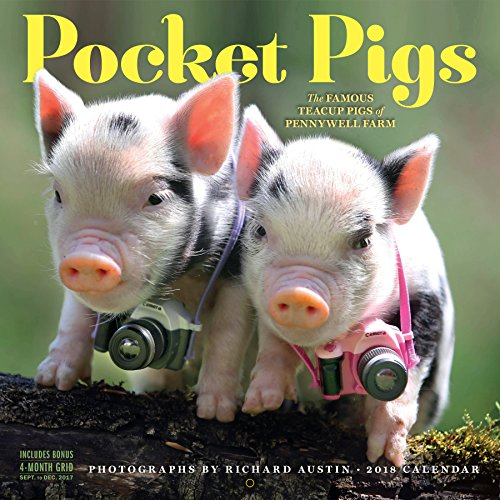 Pocket Pigs Wall Calendar 2018 cover