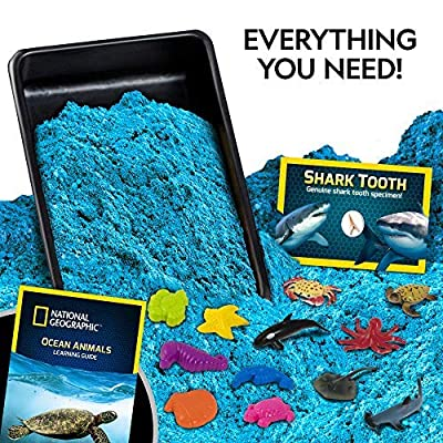 NATIONAL GEOGRAPHIC Ultimate Ocean Play Sand - 6 Molds, 6 Figures, 2 Lbs of Sand with Activity Tray: Toys & Games