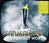 In A Perfect World by Karmakanic (2011-07-24)