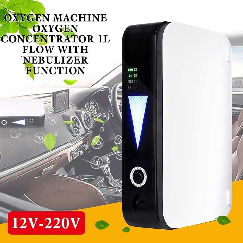 Portátil Generador De Concentrador De Oxígeno Hogar Purificador De Aire 1L/Min 40% Pureza Máquina De Oxígeno para El Hogar, Viajes, Uso del Automóvil: Amazon.es ...