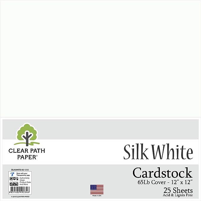 Seda Blanco cartulina – 12 x 12 inch – 65LB Cover: Amazon.es: Juguetes y juegos