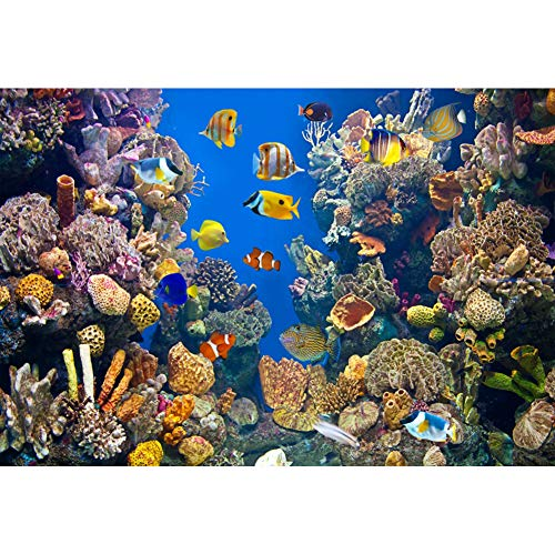 Yeele 8x6ft Vinyl 3D Underwater World Backdrop Aquarium Coral Fish Under Sea Photography Background Kids Children Party Photo Booth Shooting Studio Props