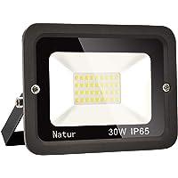 30W LED Foco exterior alto brillo Proyector led