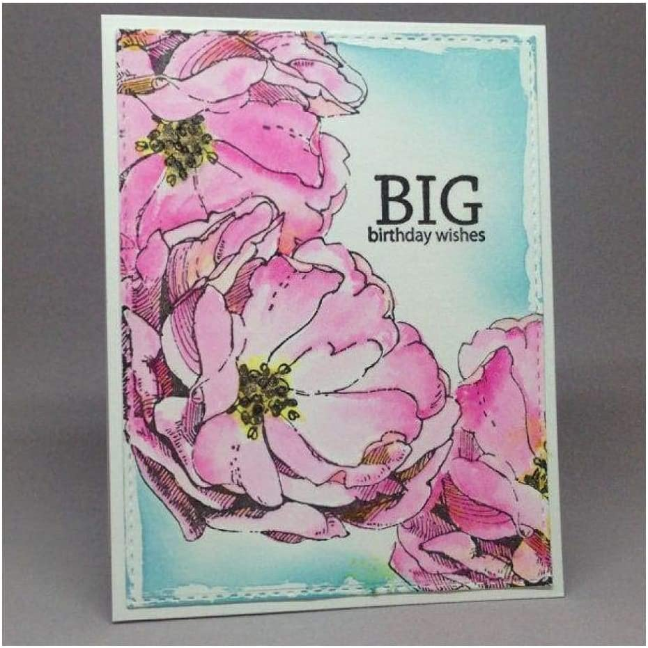 Hero Arts Clear Stamps with Coordinating Frame Dies Hero Florals Rose Stamp /& Cut
