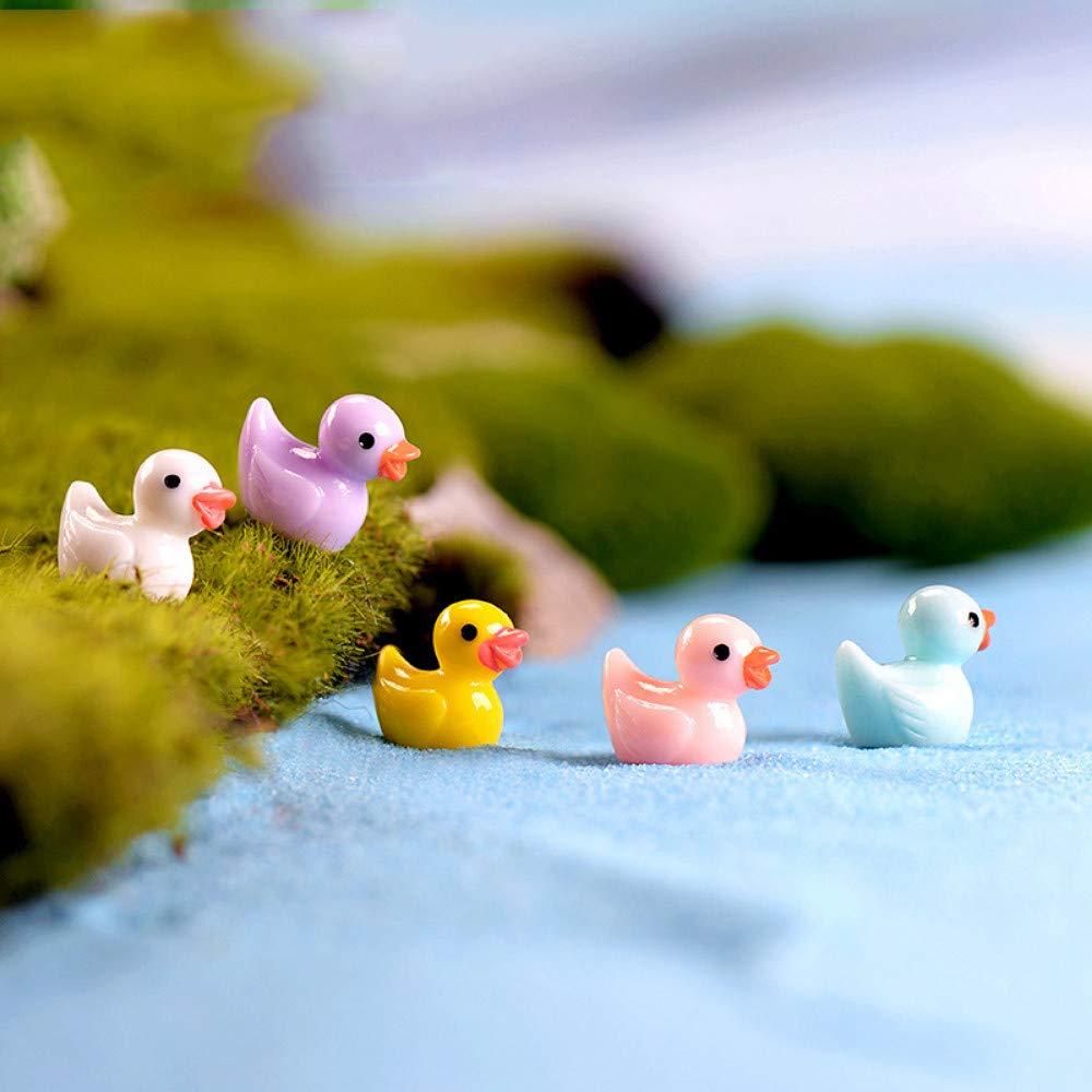 JIAHUADE 5 Pieces Mini colorful Duck Duckling Pato Small Pasture Statue Figurine Micro Crafts Ornament Miniatures DIY Garden Decor