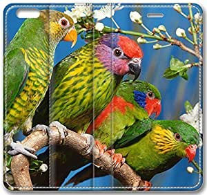 Animals Four Green Parrots Case for iPhone 6 Plus 5.5 inch(Compatible with Verizon,AT&T,Sprint,T-mobile,Unlocked,Internatinal) in GUO Shop