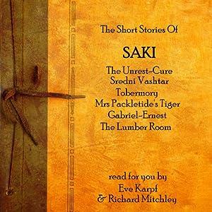 Saki Audiobook