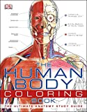 img - for The Human Body Coloring Book book / textbook / text book