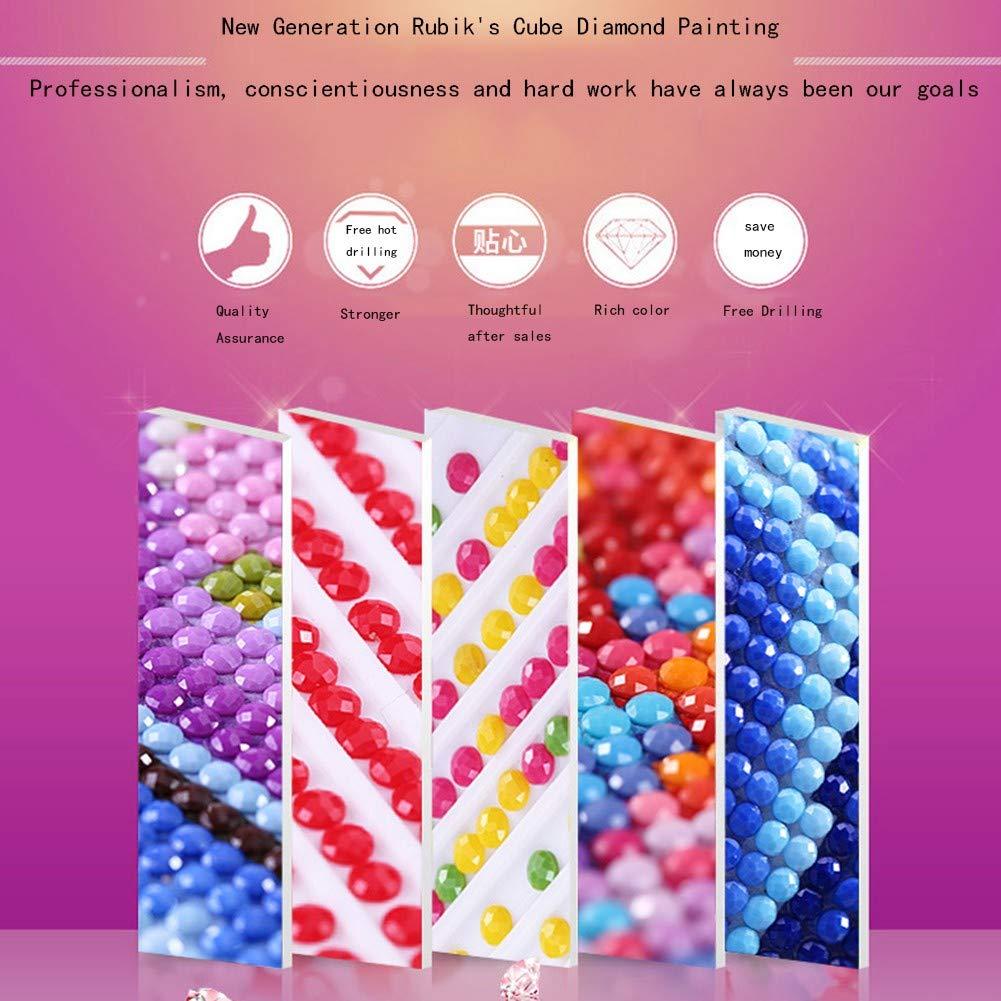 looui 5D Diamante Pittura Taglia Larga DIY Kit Completo Diamond Painting Mosaico Full Trapano Strass Ricamo Punto Croce Arte di Casa Decor della Parete Orchidea Bianca Rossa Punta Circolare,30x60cm