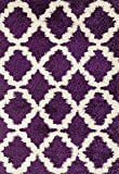 Cheap Adgo Chester Shaggy Collection Moroccan Mediterranean Trellis Lattice Design Vivid Color High Soft Pile Carpet Thick Plush Fluffy Furry Bedroom Living Dining Room Shag Floor Rug, Purple White, 3′ x 5′
