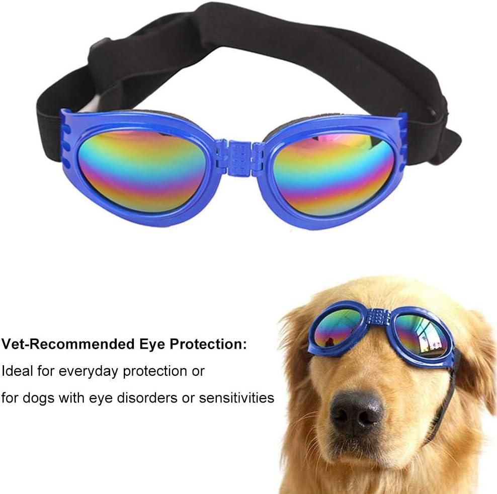 geeignet f/ür jeden Hund wasserdicht und Winddicht WENTS Hund Brille Sonnenbrillen 2PCS Pet Sonnenbrille Hund Hund UV-Schutzbrille Verstellbarer Riemen stilvoll und lustig