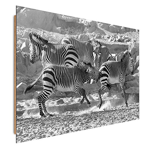 Zebra Parts Control Panel - Feeby. Deco Panel - 1 Part - 15.74x19.68 in, Wall Art Pictures Decorative Print Image Printed on Paper, ZEBRAS, NATURE, BLACK AND WHITE