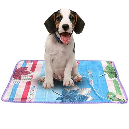 Leap-G Manta Eléctrica Almohadilla de Calefacción para Perros y Gatos/Mascota colchoneta/Cojín: Amazon.es: Hogar