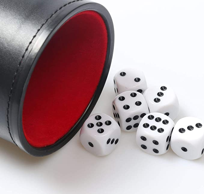 Professional Red Felt /& Leather Dice Cup with Five Dice for Casino Gaming
