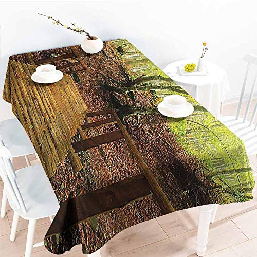Homrkey Washable Table Cloth Apartment Decor Collection Weathered Wooden Bridge Over River Leads to a Footpath Between Birch Trees in Autumn Green Peru Easy to Clean W60 xL102 -