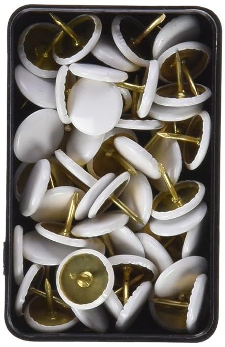 Molho Leone Pins Plastic Cover