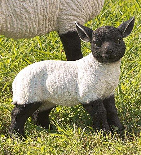 (Plow & Hearth 54050 Standing Lamb Suffolk Sheep Resin Garden Stat)