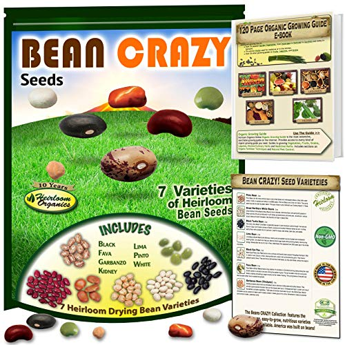- Bean Seeds Crazy! 7 Open Pollinated Heirloom Beans. Organic Growing Guide Included. Black Beans, Chickpea, Pinto, Kidney, White, Lima, Fava for The Home Grower.